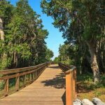 Kissimmee Natural Trails